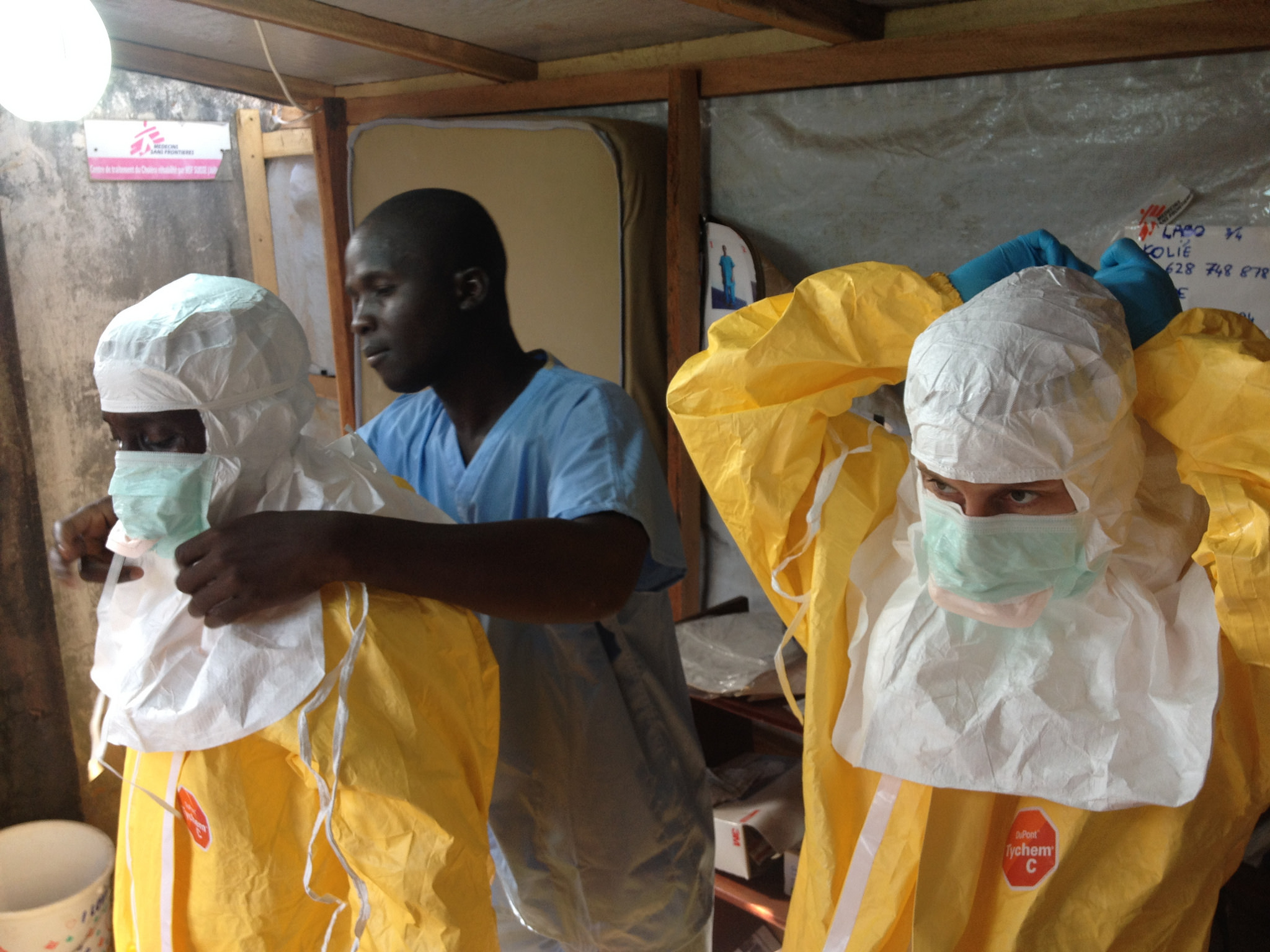 understanding the ebola virus Ebola is a disease that has no cure, you have to know to know this disease that does not happen in your life symptoms, prevention and treatment is one way to protect yourself from this new disease.
